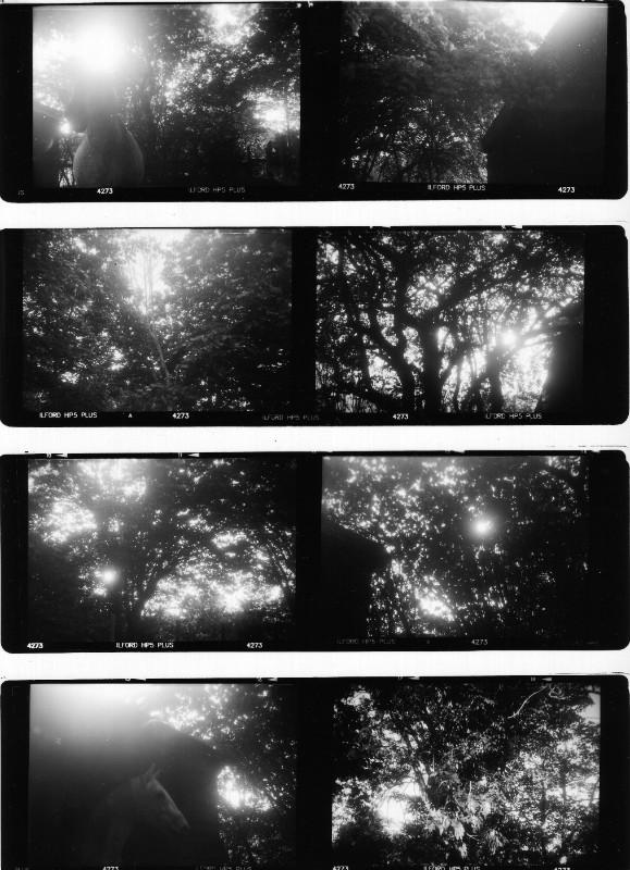 Marc Trivier, Kafka été 2015. Photographie noir et blanc. 50 x 50 cm